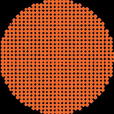 AR Dotted Orange Circle-WEB.png