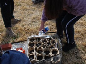 OLSS 6th-graders perform maintenance in the Community Garden.
