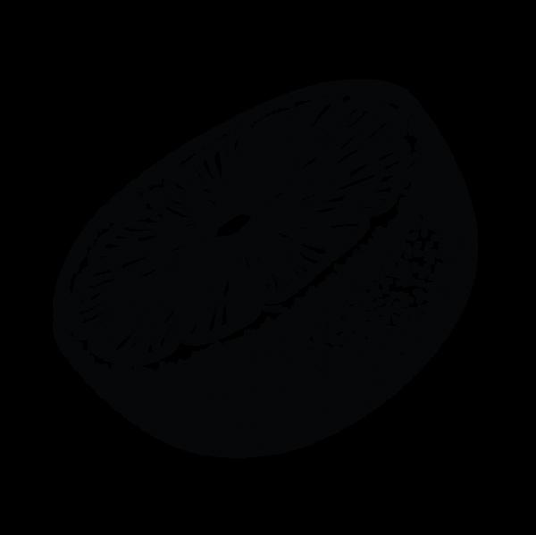 Centennial Isolated Graphics Citrus Half
