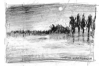 -landscape_www-pinkhat-live_Monika-Skarz