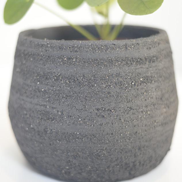 zwarte groffe klei bloempot met plantje ca 13 cm hoogte  prijs: 20 euro