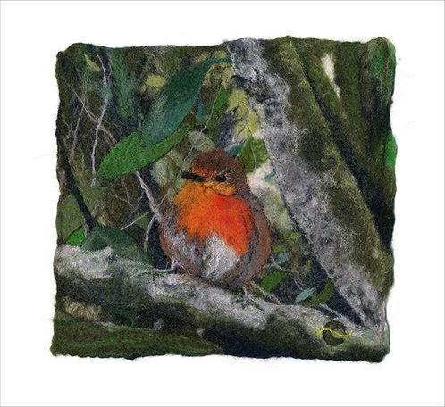 Precocious Robin (2020)