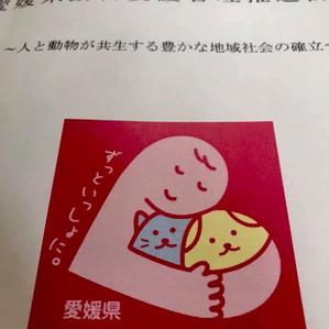3/29『愛媛県動物愛護管理推進計画』策定‼️😊