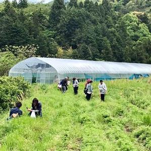 5/2『農業自然栽培体験とオーガニック給食についてのミーティング』😊