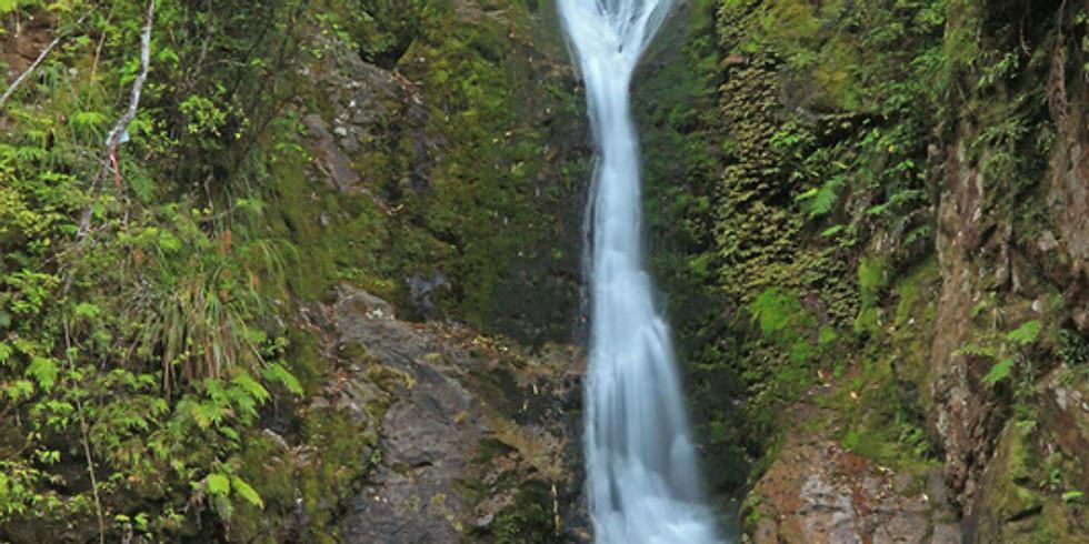 Wentworth Valley Falls Walk