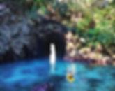 donut island 5 (1).jpg