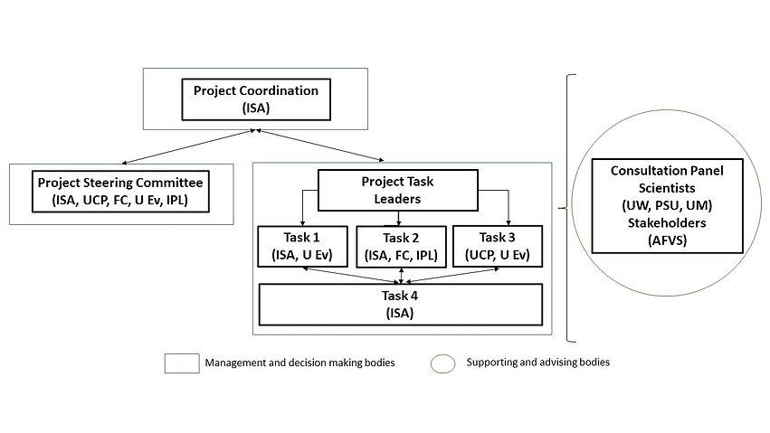 Management structure.jpg