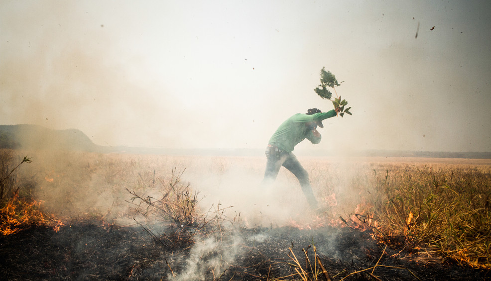 """A local Farmer putting out small fires in a scorched area of a farm in Nobres, State of Mato Grosso. The scorched areas of a fire can still become a danger, as a small spark from a burned tree can trigger another fire in the vicinity. After six hours of fighting, due to high temperatures of the afternoon and strong winds the fire became uncontrollable, no one could do nothing but watch and try to save some small areas of the farm. Lt. Whiby: """"it's really frustrating we did everything we could, but the farm owner really didn't care about any fire safety measure, when the fire came there was no water, tank trucks or enough buffer zones, the result is this all the fields and crops destroyed."""""""