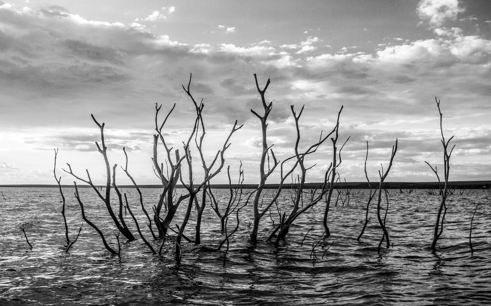 Branches from dead trees rise from underwater in the city of Petrolândia, Pernambuco. The Old City of Petrolandia was flooded in 1988 due to the construction of the Itaparica Dam, The inhabitants were moved to a location about 10 km distant from the original city. while many received financial compensation for losing their houses in the original city, hundreds were left without a penny and were obligated to restart from zero, People who paid rent, people who lived in their parents' houses, and many others.  The production of electricity is one of the main uses of the São Francisco river, with eight Powerplants along the river, the electricity generated on the river powers almost the entire northeast region.