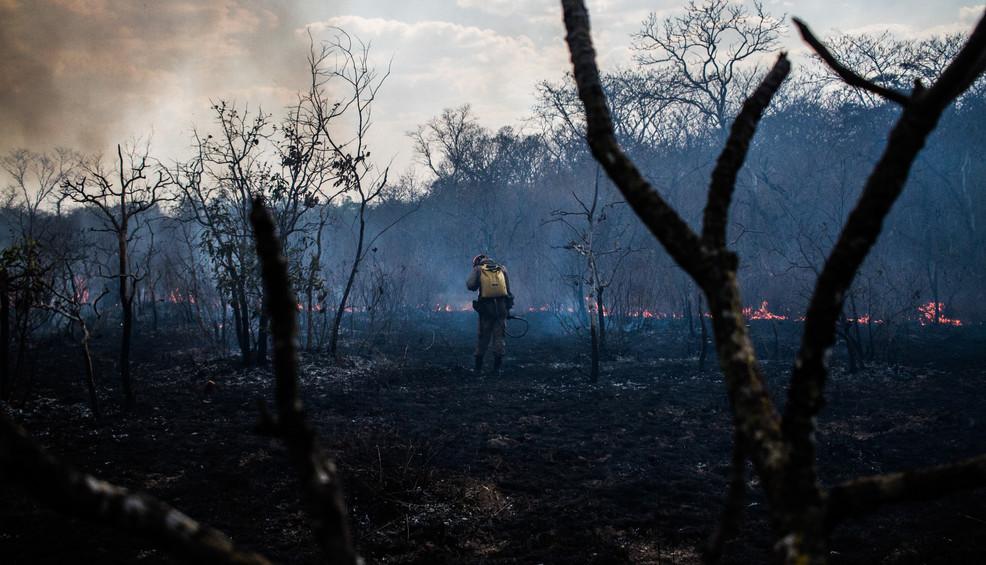 DW-Joao Velozo fires in the amazon-104.j