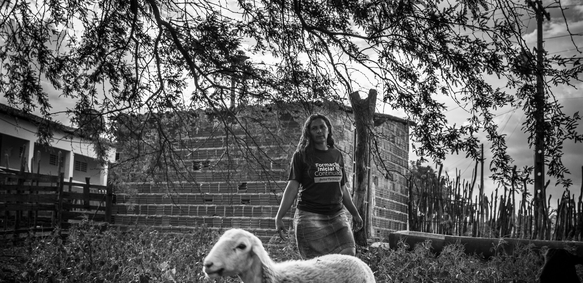 """Cilene Silva And her husband Damião shepherding goats and sheep on their farm. Like the vast majority of the farmers from the semi-arid region, Cilene and Damião raise sheep and goats. The animals are well adapted to the region:  they can eat almost anything, and they can absorb water from the leaves they eat. Sheep and goats are also a """"walking bank"""" for the farmers:  they can sell one or two animals and have money for whatever they need."""