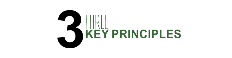 3_KEY_PRINCIPLES.png