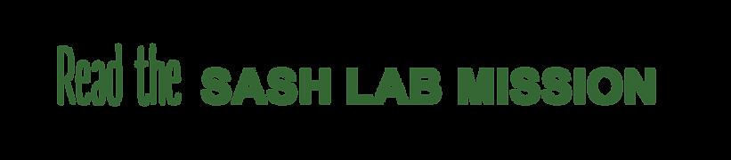 SASH_LABMISSION.png