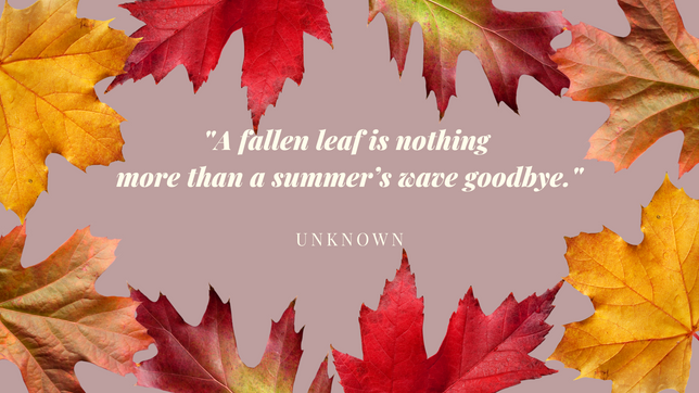 COUNTDOWN TO FALL!