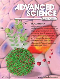Adv. Sci. 2019, 6, 1801688 front cover.j