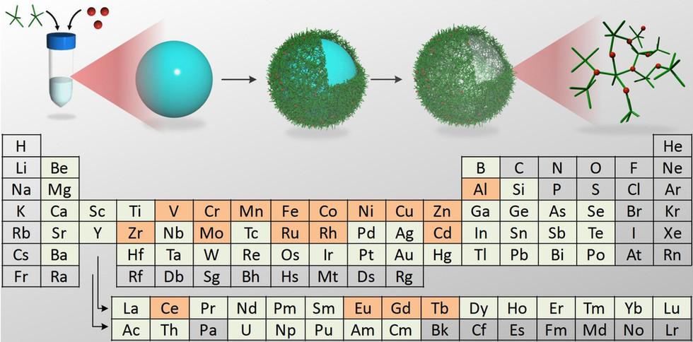 Multifunctional Polyphenol-Based Materials