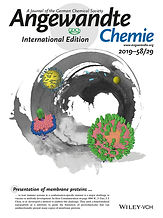 Angew. Chem. Int. Ed. 2019_cover picture