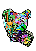 YeahDawgie Transparent.png