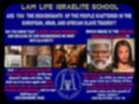 Law Life Flyer.jpg