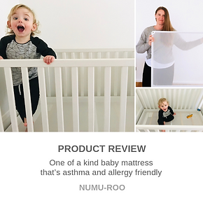 Product Review - Numu-Roo.png
