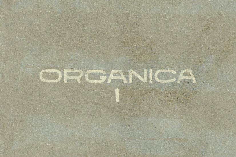 ORGANICA I