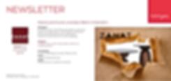 Newsletter1-Zanat-3840x1818.png