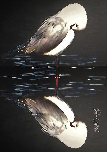 BIG REFLECTION.jpg