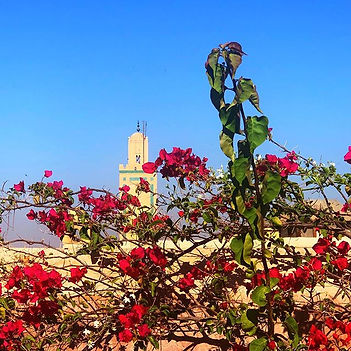 The Koutoubia Mosque Marrakech from over