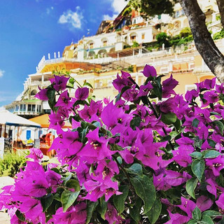 The colours of Positano. Just heavenly.j