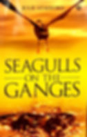 seagulls on the ganges  shoutout 2_edite