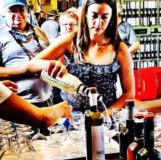Wine tasting _ Robola Winery Cephalonia.