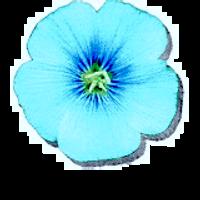 Billmann Logo.png