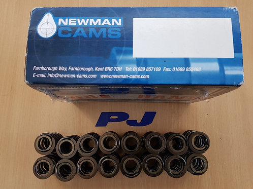 COSWORTH TWIN VALVE SPRING SET (16) NEWMAN CAMS BD14 TO BD16 EASY FIT NO MODS