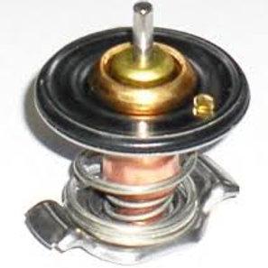 Termostatas 2.4D, D5 varikliams