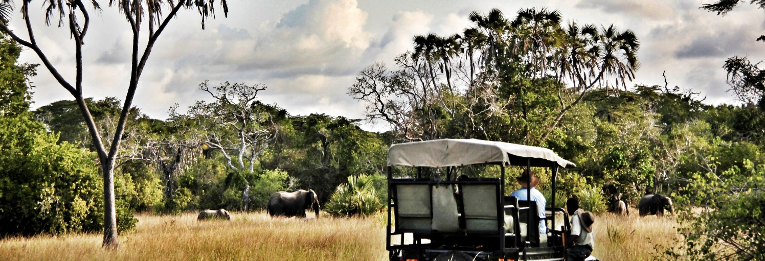Tanzania Safaris - Tent With A View & A Tent With View | Tanzania Safari Holidays
