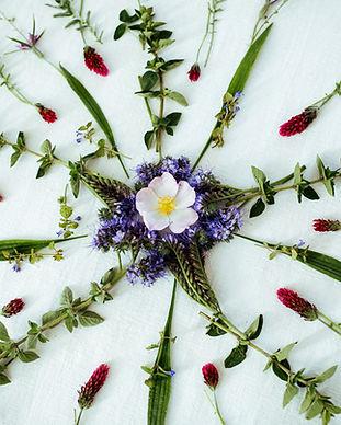 Herbal Circle