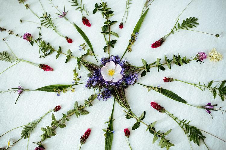 Maria Noi - Herbal Mandala