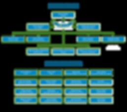 organigramme2-01.png