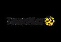 logos_festyvhockey-04.png