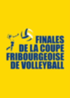 volley fribourg numéro 2