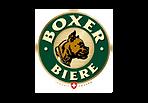 Boxer sponsor festyvhockey
