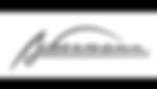 Ackermann sponsor festyvhockey