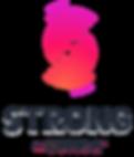 logo SVZ.png