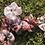 Thumbnail: Scrap Scrunchie