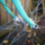 old bike.jpg