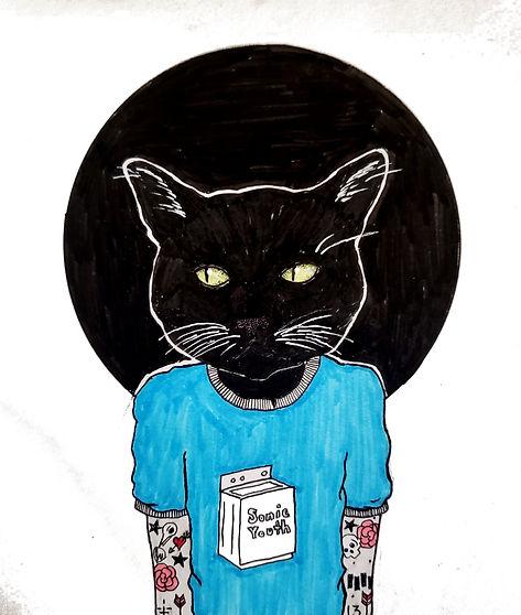 sonic cat.jpg