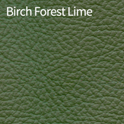 Birch-Forest-Lime-400x400.png