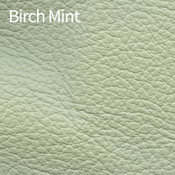 Birch-Mint-400x400.png
