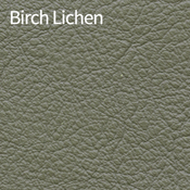 Birch-Lichen-400x400.png