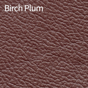 Birch-Plum-400x400.png